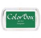 Tinta Color Box ,Evergreen.